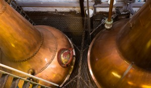 Stills at Balblair Distillery in Edderton, Scotland. Photo ©2011 by Mark Gillespie.