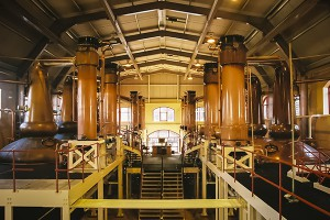 The still house at The Glenrothes Distillery in Rothes, Scotland. Photo ©2010 by Mark Gillespie.