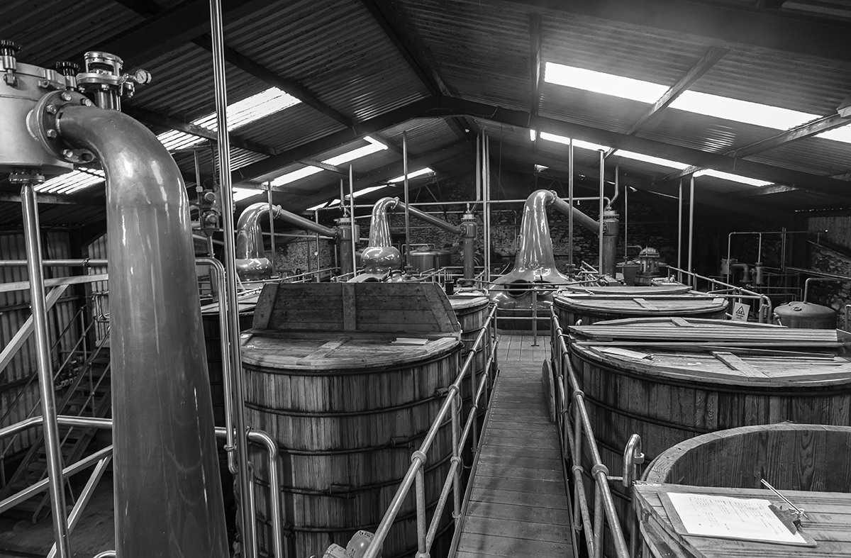 This week's photo shows the inside of Ireland's Dingle Distillery, which was built inside a former sawmill at the end of Dingle Bay. You can take a tour of the distillery as we tell Dingle's story on this week's WhiskyCast.